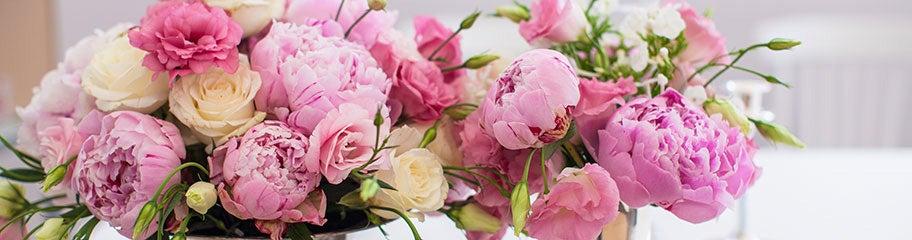 Perennials for bouquets perennials for cut flowers american meadows plant perennials to enjoy cut flowers all season long mightylinksfo