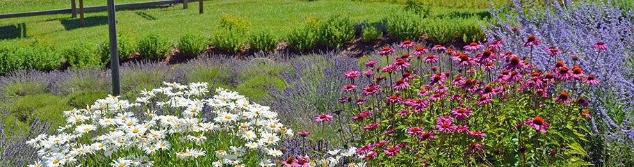 Pre planned gardens specialty gardens made easy ccuart Images
