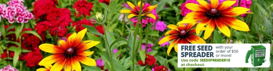 Midwest wildflower seeds american meadows pink go for one of our specially formulated midwest wildflower seed mixes or choose from our wide selection of individual species mightylinksfo