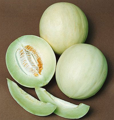 how to get melon seeds