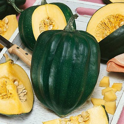 how to cook acorn squash seeds