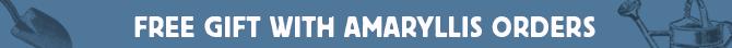 Free Gift with Amaryllis Orders + Save up to 50% on Amaryllis Bulbs and Kits