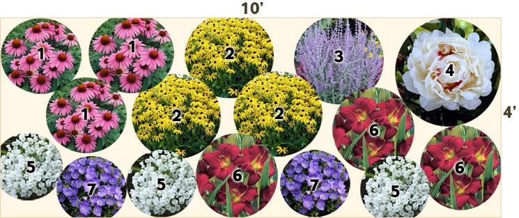 Butterfly Garden 10x4