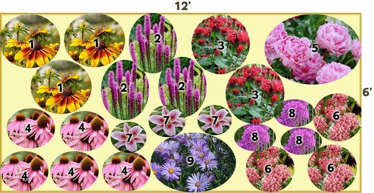 Pollinator explosion perennial garden 12 39 x 6 for Pre planned garden designs