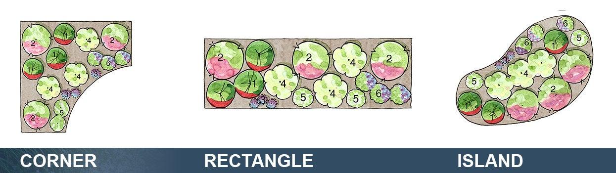 Amazing Plant Key For 10 X 4u0027 Beds