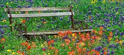 April in Texas