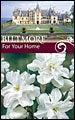 Biltmore Estate Daffodil Double Poet's