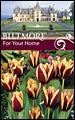 Biltmore Estate Tulip Gavota