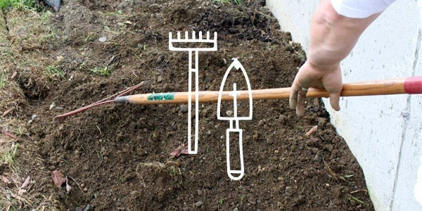 how to remove weeds with hand tools