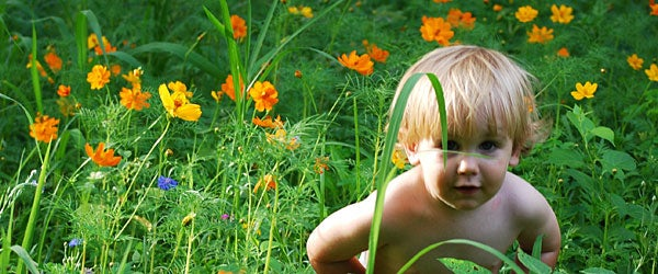 Kids love wildflowers