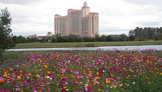 Ritz Carlton Orlando with Cosmos