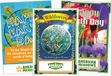 Celebrate Earth Day with Seed Packets