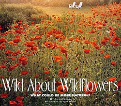 AAA Wild About Wildflowers