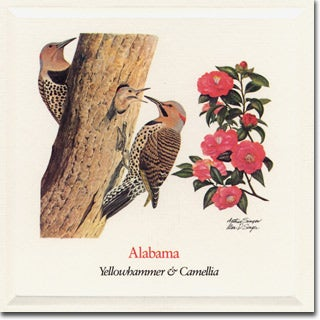 Alabama State Flower And Bird