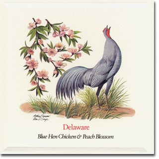 Delaware  State Flower and Bird