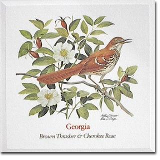Georgia State Flower And Bird