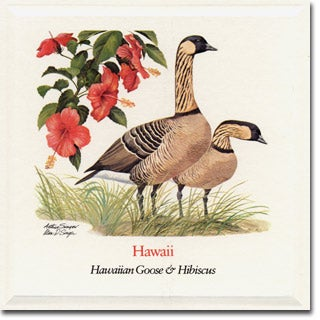 Hawaii  State Flower and Bird