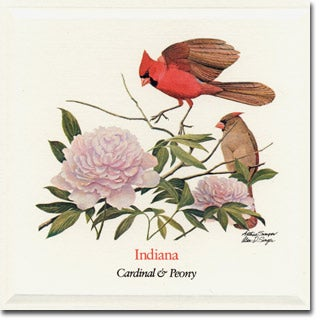 Indiana  State Flower and Bird