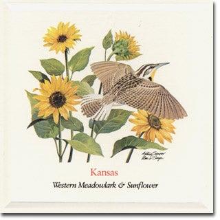 Kansas  State Flower and Bird