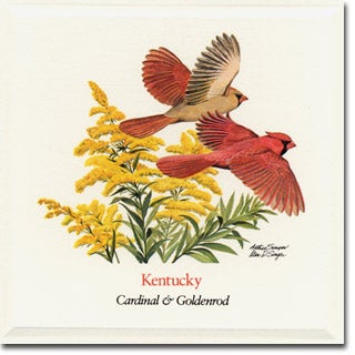 Kentucky  State Flower and Bird