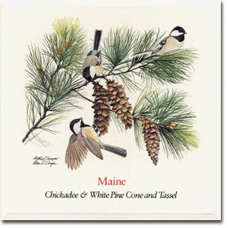 Maine State Flower And Bird