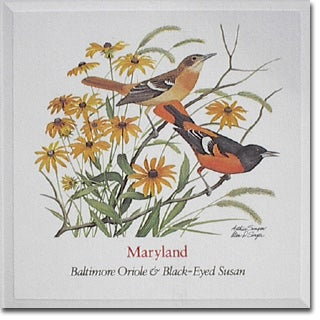 Maryland  State Flower and Bird