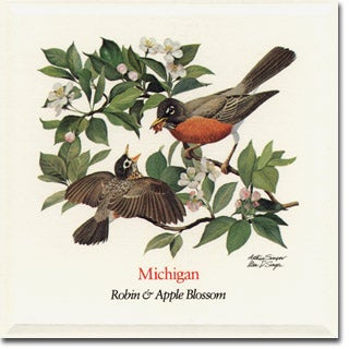 Michigan  State Flower and Bird