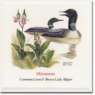 Minnesota  State Flower and Bird