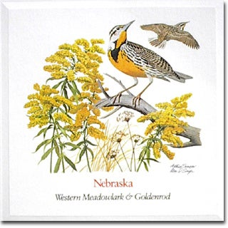 Nebraska  State Flower and Bird