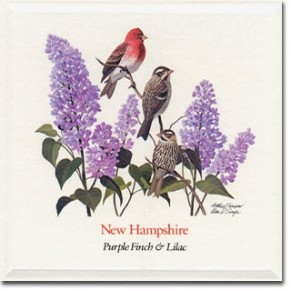 New  Hampshire State Flower and Bird