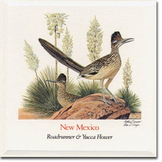 New Mexico  State Flower and Bird