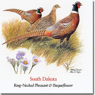 South  Dakota State  Flower and Bird