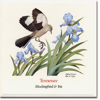 Tennessee State  Flower and Bird