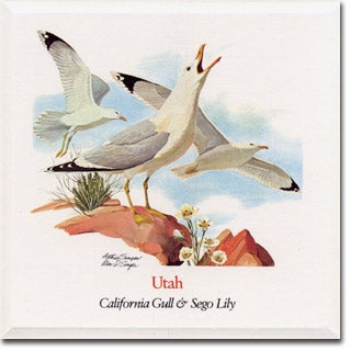 Utah State  Flower and Bird
