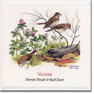 Vermont State  Flower and Bird
