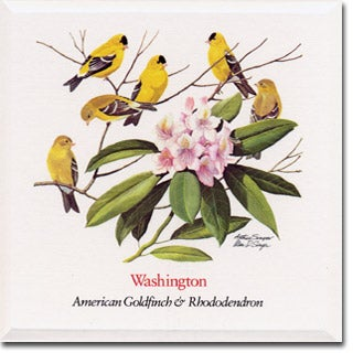 Washington  State Flower and Bird