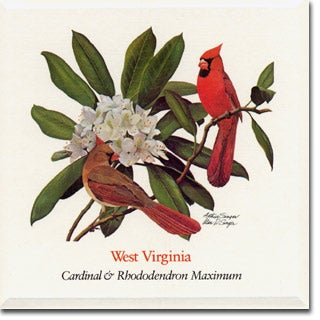 West Virginia State Flower And Bird