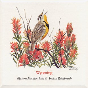 Wyoming  State Flower and Bird
