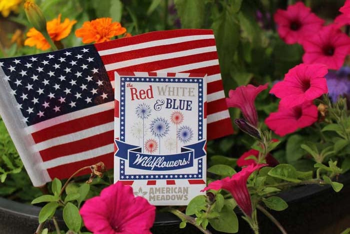 AMIBlog-4th-parade-rwb-seed-packet