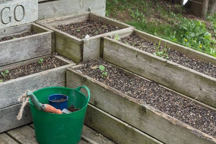 Tired soil in a container garden can be re-charged before planting.