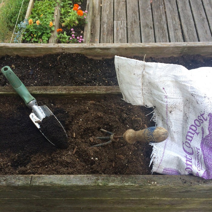 Recharging the soil in your planters each time you plant has benefits for both flowers and food.