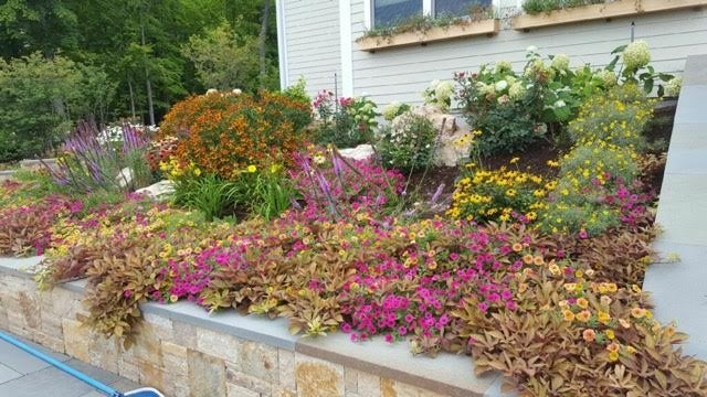 annual landscape design