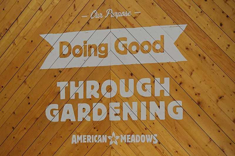 gardening questions - doing good through gardening