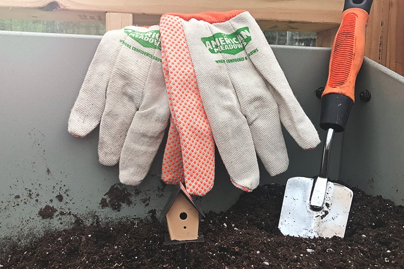 easy to grow plants: gardening tools