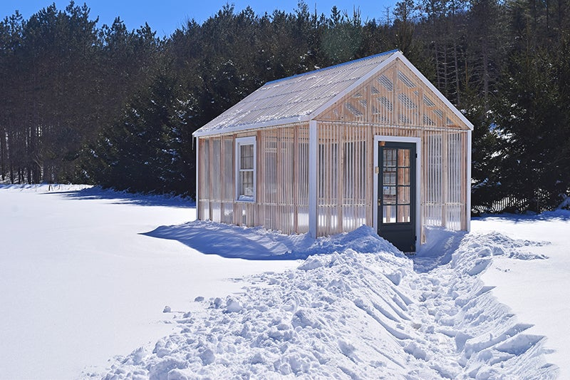 homesteading - greenhouse