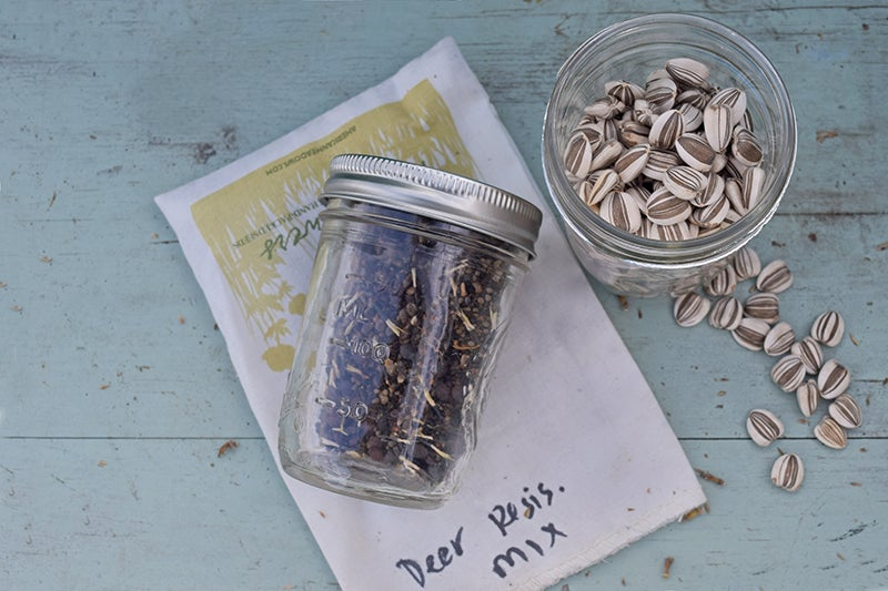 share plants - seeds in jars.