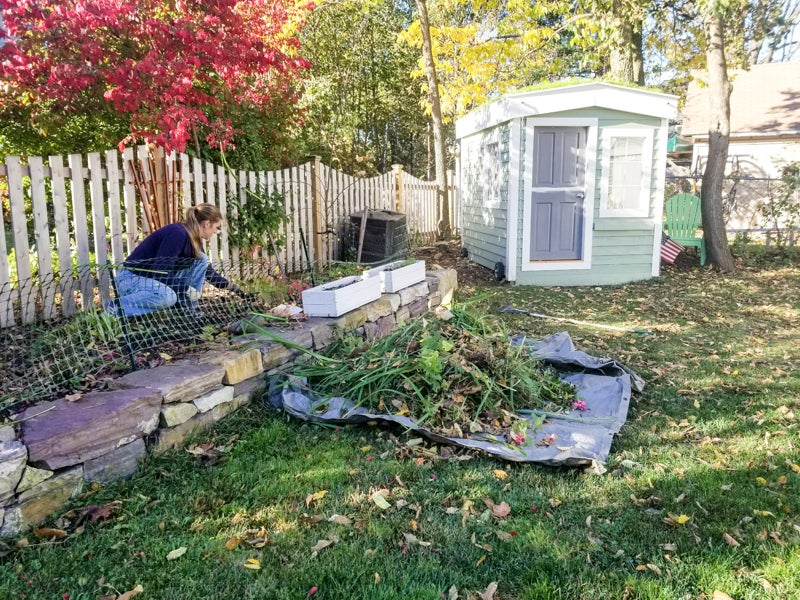 cleaning up garden beds before redesign