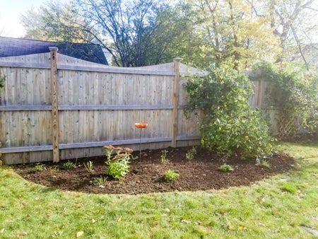 7 Steps To A Painless Garden Redesign