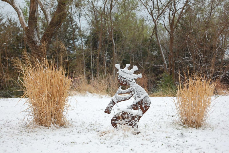 ornamental grasses in winter - grasses and sculpture