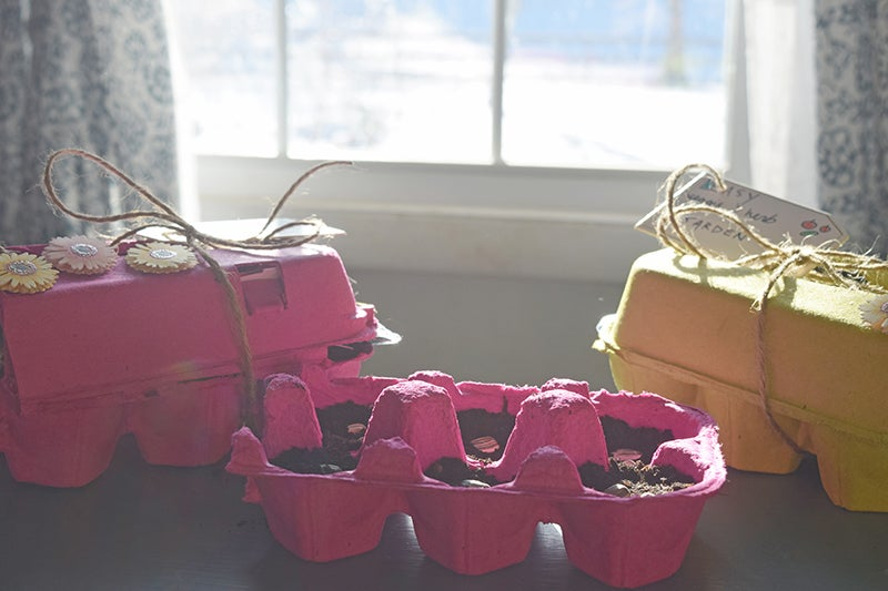 Diy Garden Gifts: Planting Seeds
